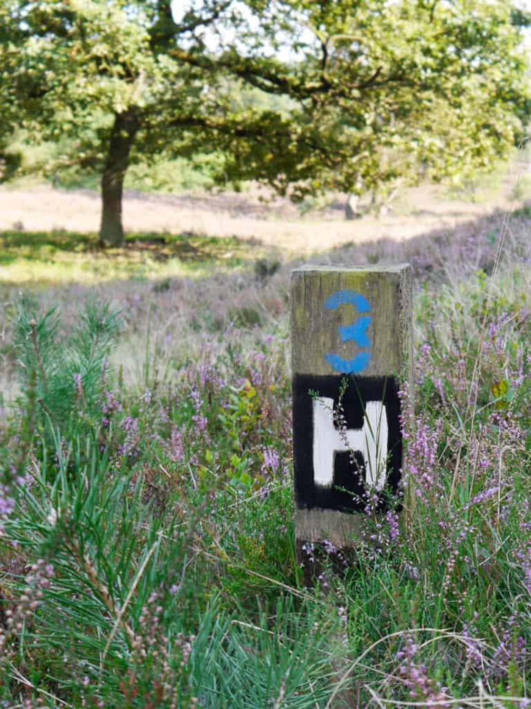 Wegmarkierung Heidschnuckenwanderweg durch die Fischbeker Heide im Süden Hamburgs | Foto: FOLLOW ME Hamburg