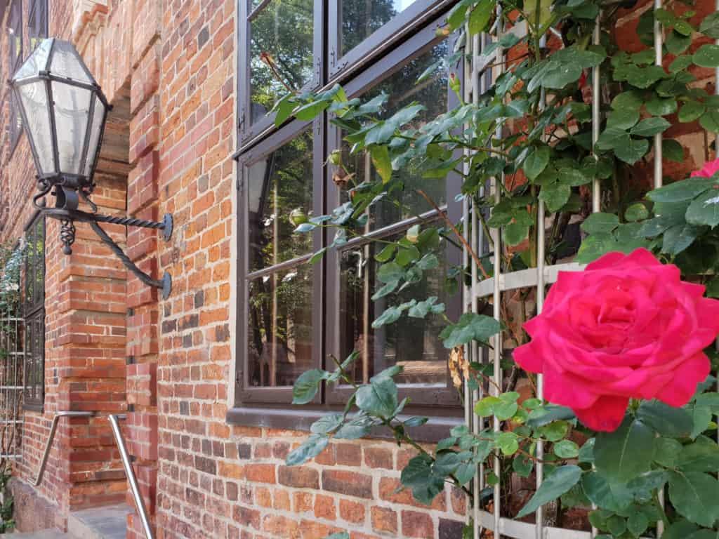 Fassade mit roten Roden in Lüneburg | Foto: FOLLOW ME Hamburg